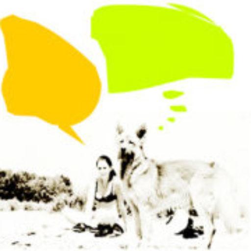 cropped-cropped-reporterin_logo.jpg